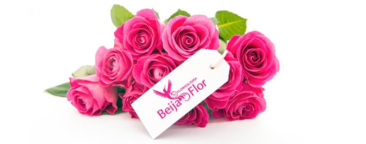 Arranjos Beija Flor