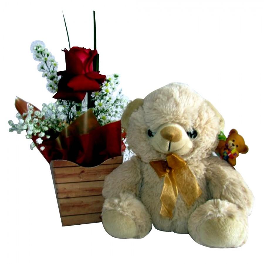 ursinho com rosa nacional